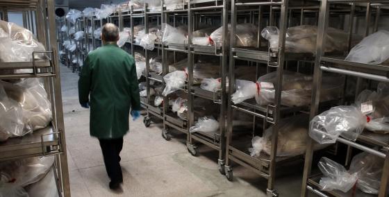 La Complutense admite la presencia de cadáveres en sus sótanos