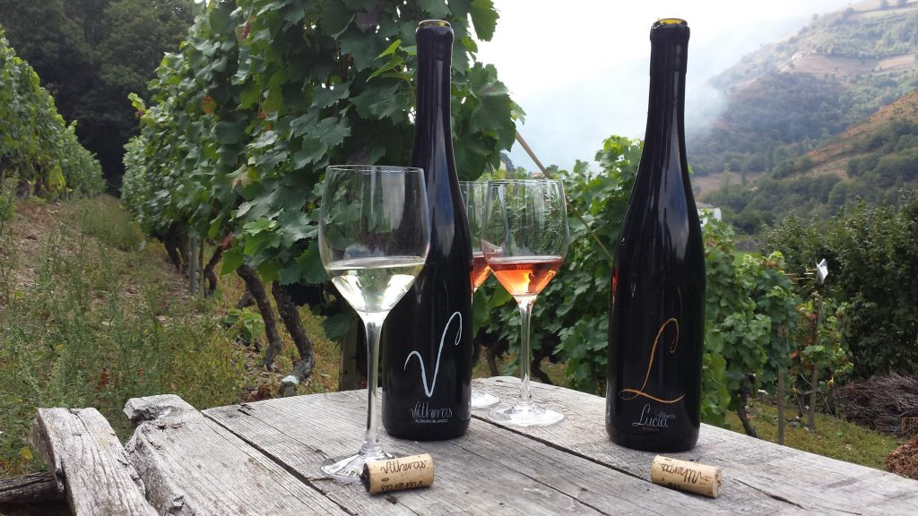 Los vinos españoles, de triunfo en triunfo, de medalla en medalla. ¿Por qué?